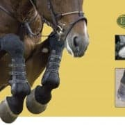 About EquiLife