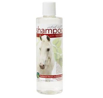 dye free shampoo