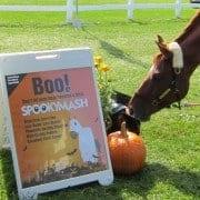 Lousie SpookyMash