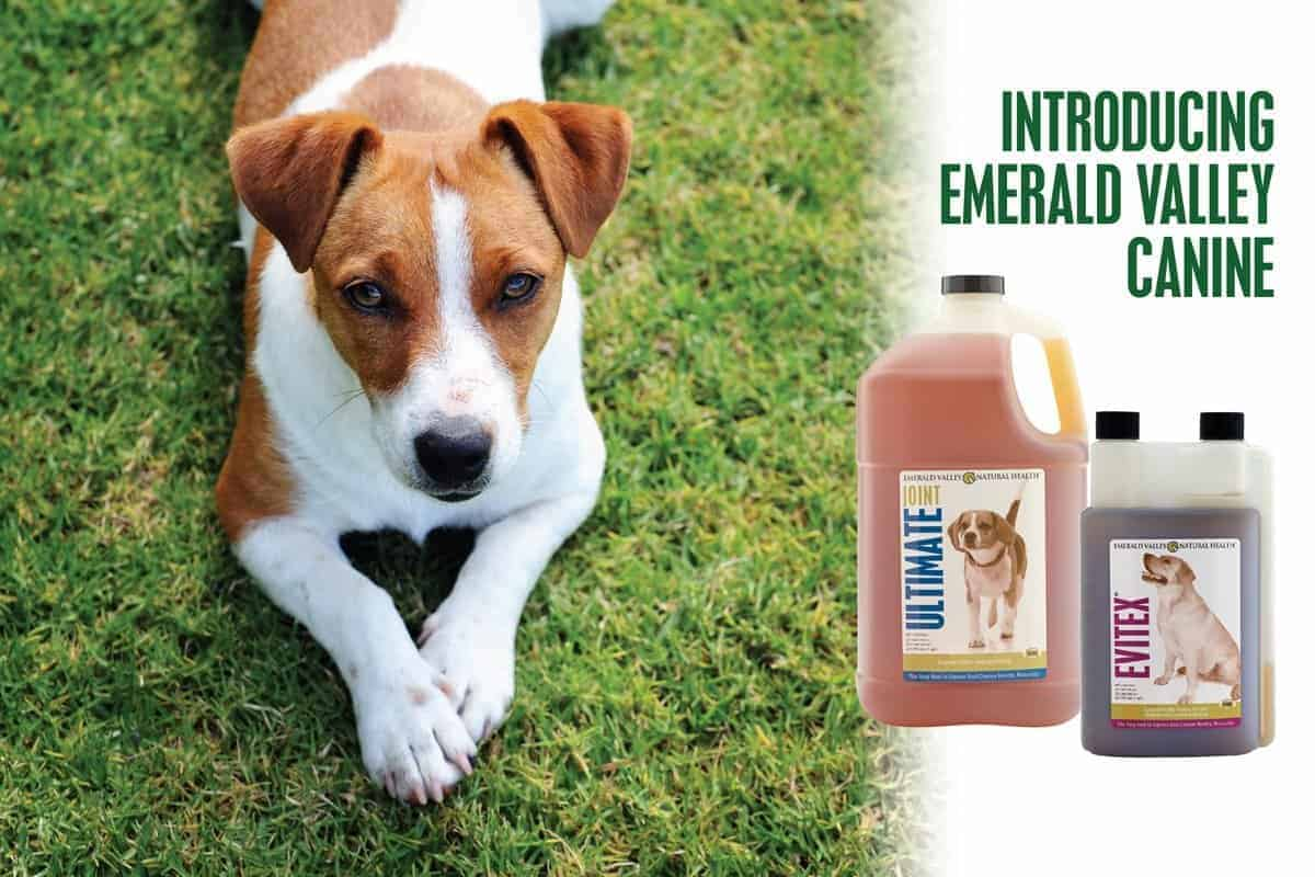 Introducing Emerald Valley Canine Products
